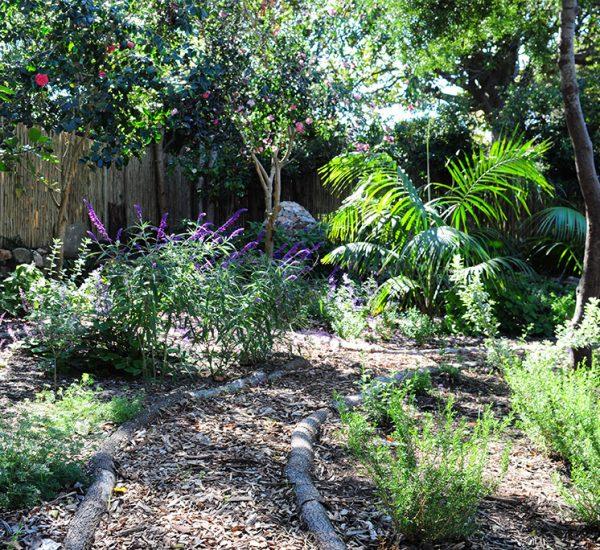 A colourful slight garden